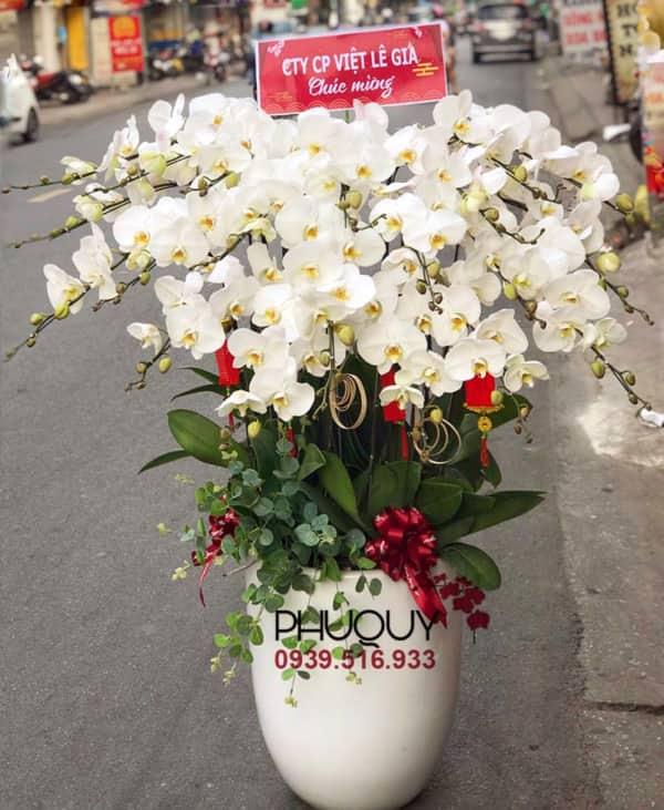 chau-lan-ho-diep-trang-hanh-phuc-an-khang-20-300121