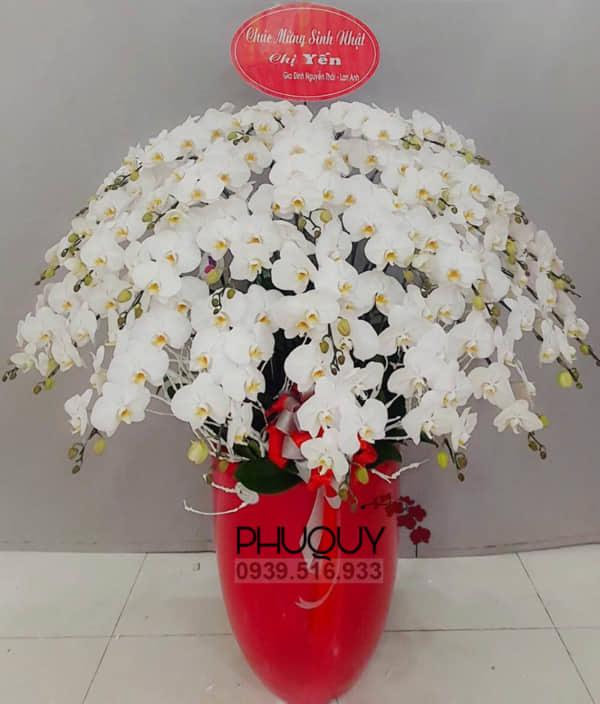 chau-lan-ho-diep-trang-an-khang-thinh-vuong-24-070221