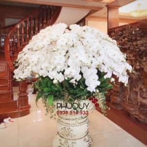 chau-lan-ho-diep-trang-hanh-phuc-an-khang-39-020221