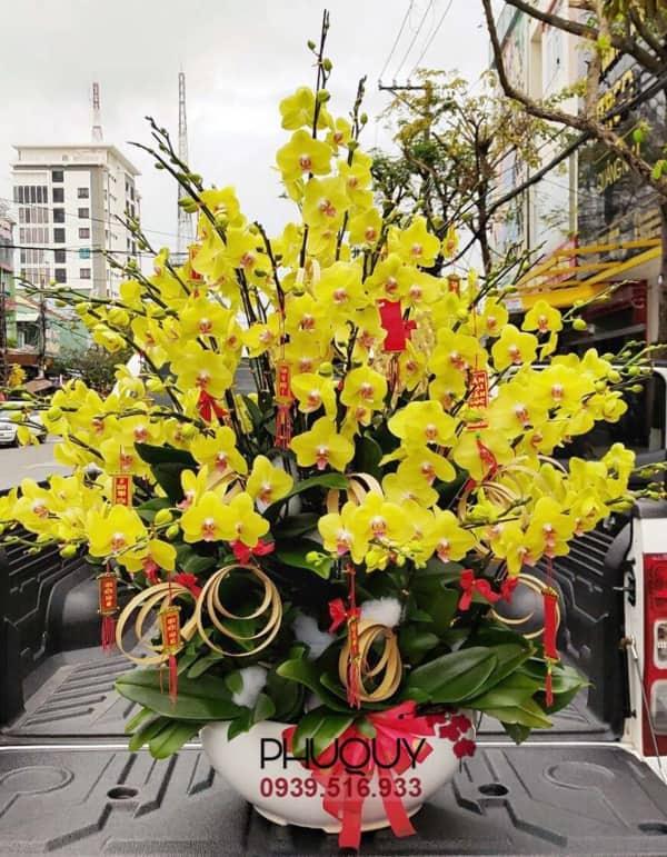 chau-lan-ho-diep-vang-an-khang-thinh-vuong-49-070221
