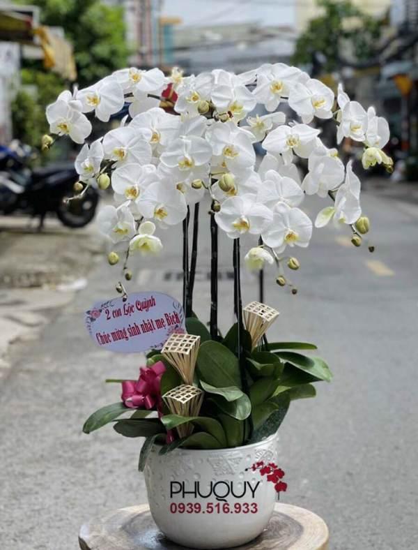 chau-lan-ho-diep-trang-cat-loc-phu-quy-08-121021