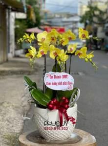chau-lan-ho-diep-vang-thinh-phat-6-121021